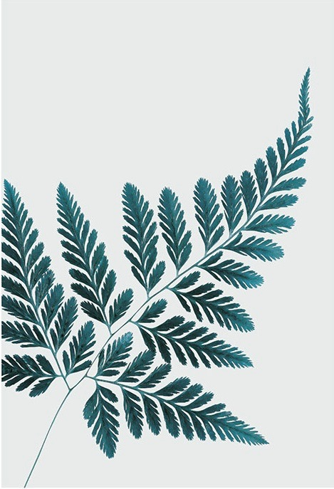 Affordable art prints to buy online - Petrol Fern poster at Desenio online retailer.