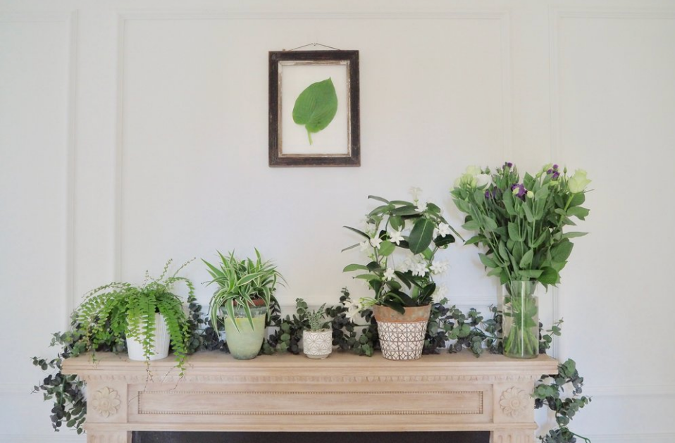 Camilla Pearl greenery display at home on the mantelpiece, ideas for adding touches of greenery and florals to your decor.