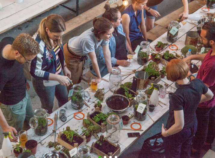 London Terrariums workshops