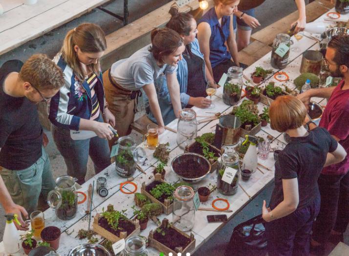 London Terrariums workshops
