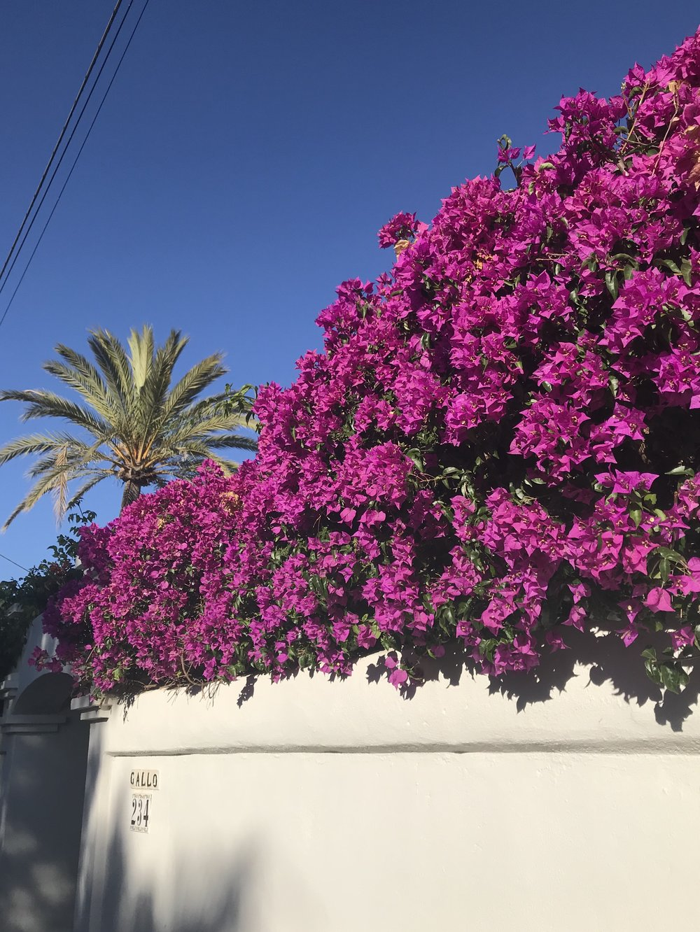 Trip to Marbella in Spain to soak up all the colour and pattern inspiration.