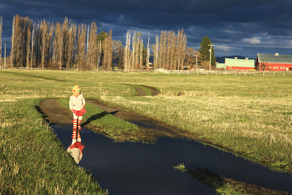 """New Rain Boots"" on the Camas Prairie"