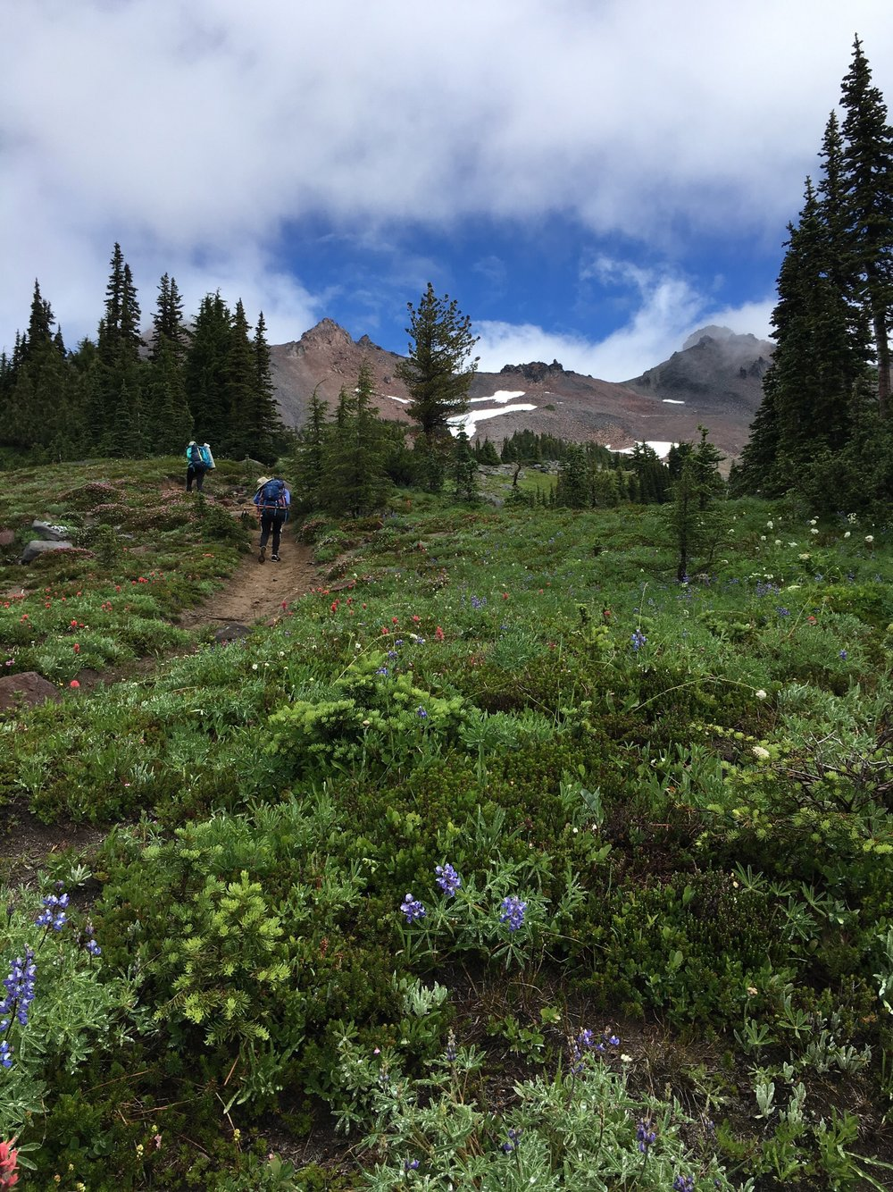 A picture Kris took whilst backpacking with some friends in Camas, Washington last summer.