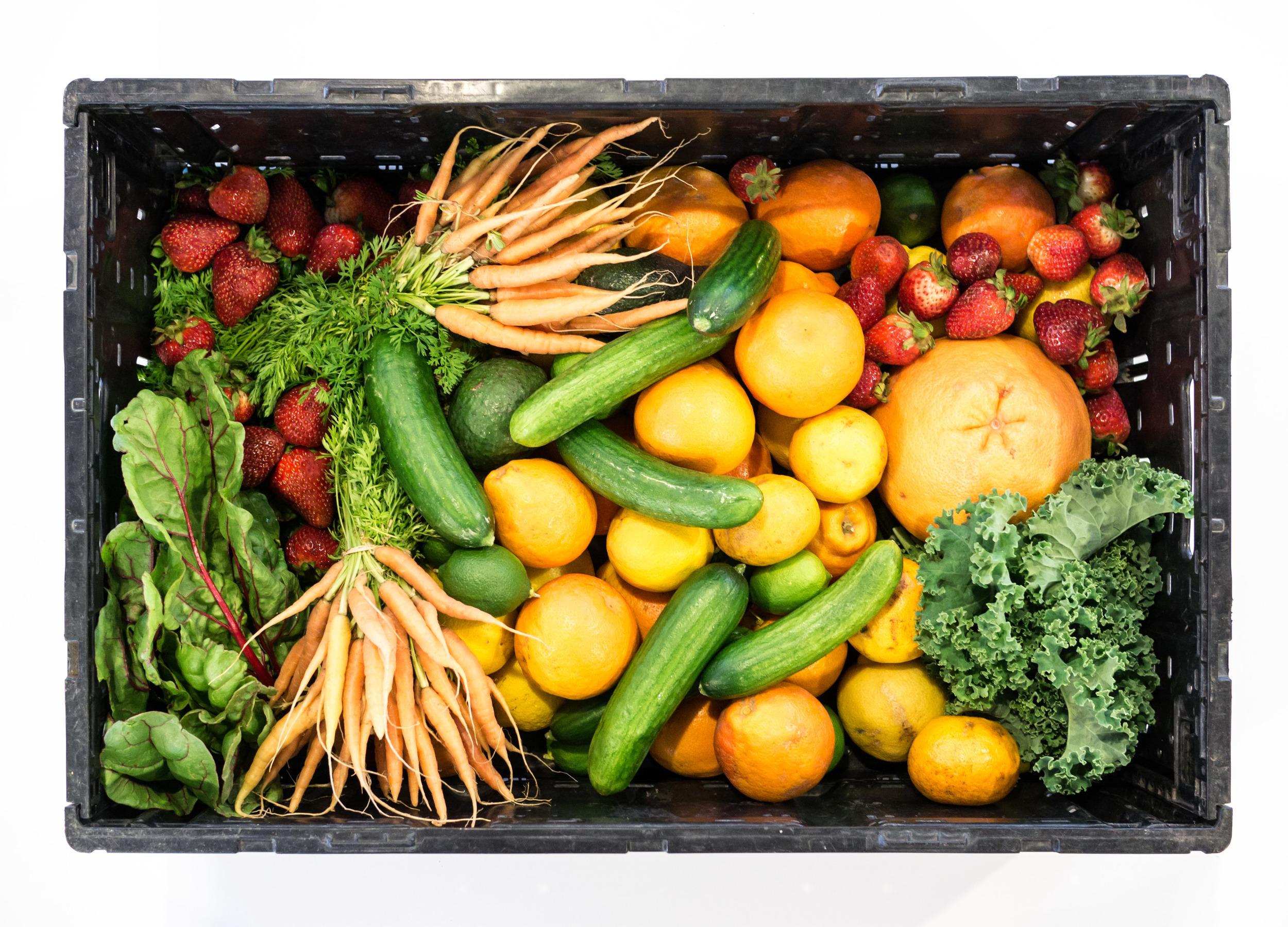 Food Philosophy - Lauren Fowler RDN
