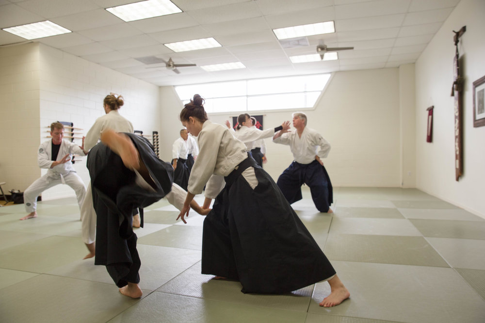 lower resolution-Saturday-May-13-2017-Lars Sensei-Friendship Seminar-NOLA Aikido-Julia (58 of 228).jpg