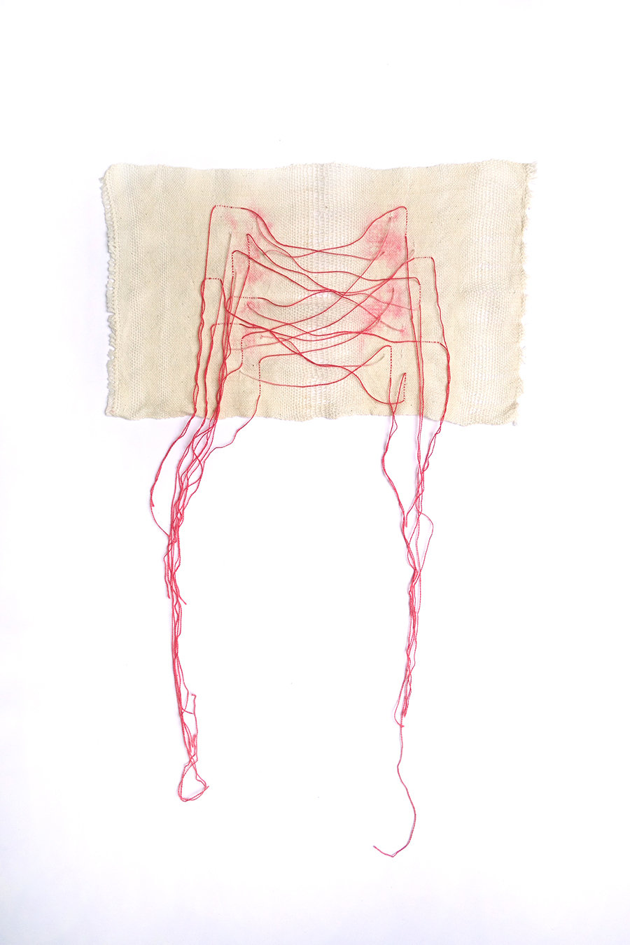 Study for 'Offshoots'   Cotton fibres 2016