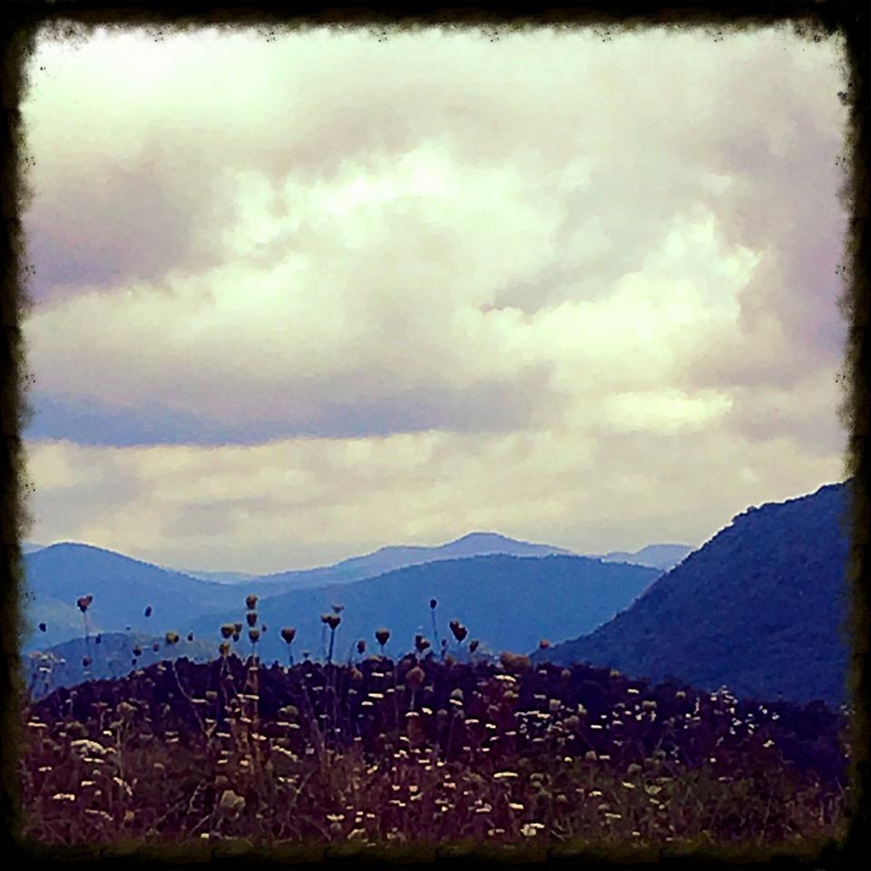 Blue Ridge Pastures.