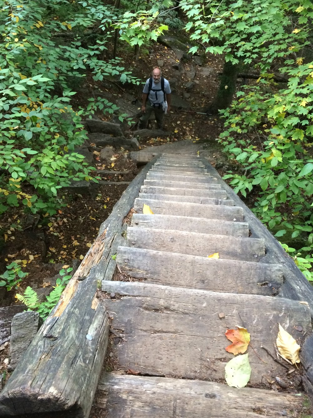 Typical White Mountain ladder...this was on the Boott Spur Trail in 2014