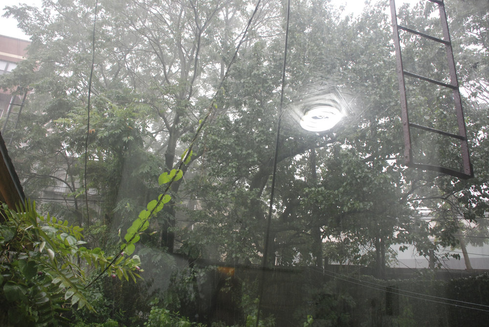 rain0198#2.jpg
