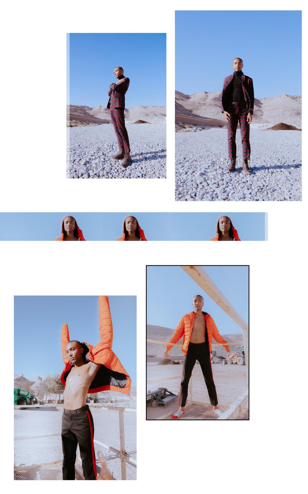 Collage_Reggie3.jpg