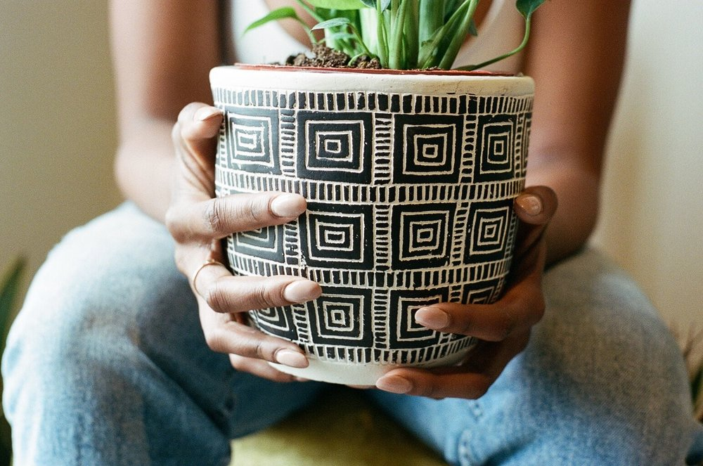 Liven up someone's life with one of our potted plants. In hand made bowls these plants are a long term reminder of your appreciation.