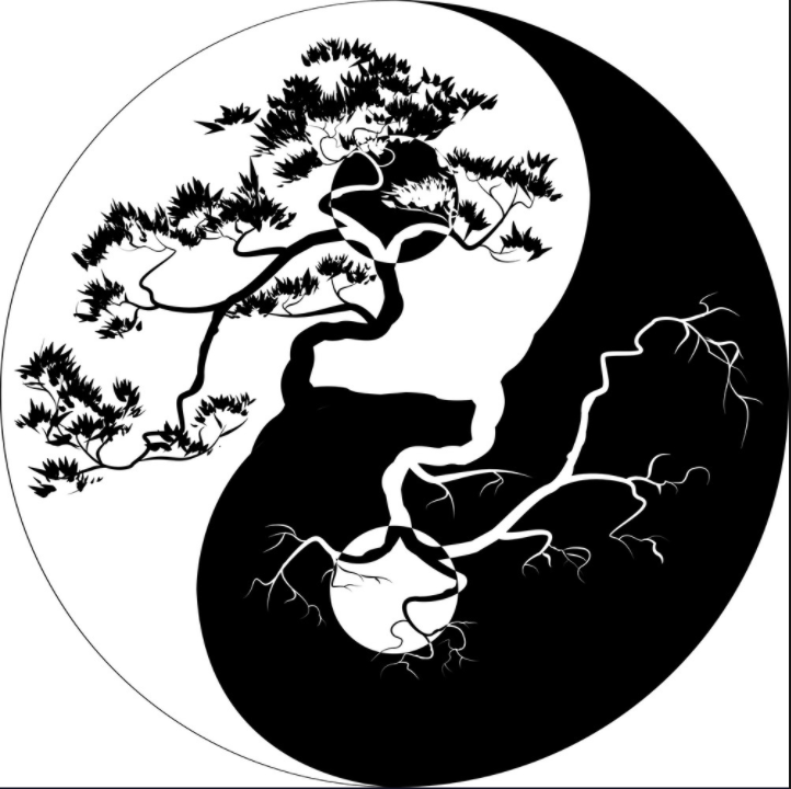 YinYang - Movement Practice