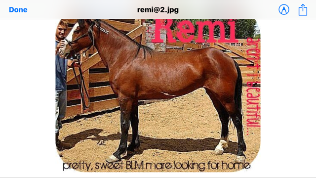 Remi+before.png