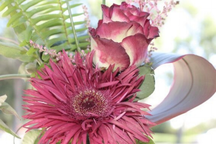 Best floral shop in Lethbridge. Awesome designs and wonderful service.  —Tedi Rogers Schmold