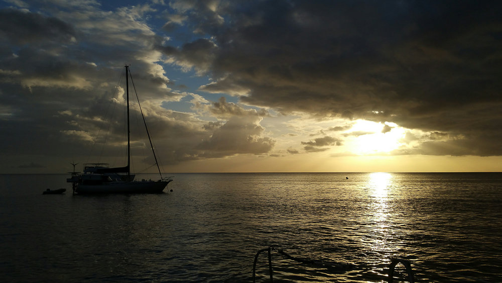 Sunset after a day of sailing and whale watching