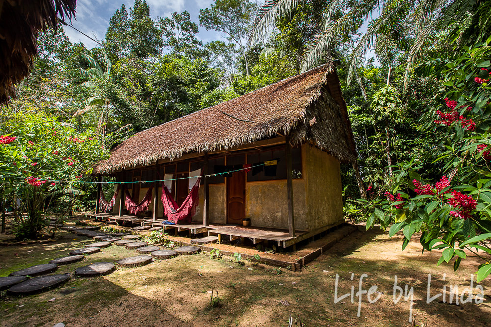Our lodge at  Madidi Jungle Tours