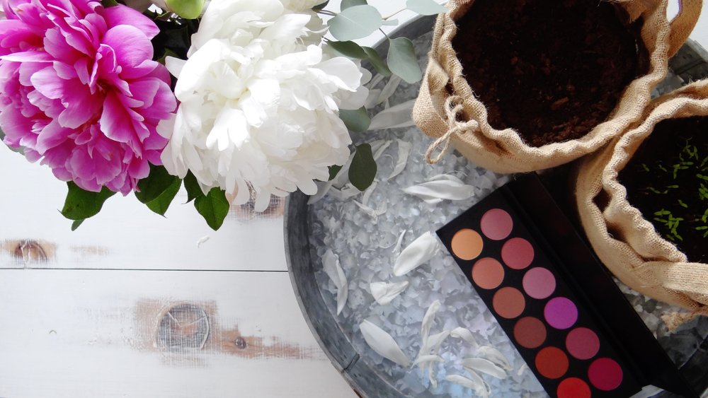 Building a Cruelty-Free Professional Makeup Kit: Blush