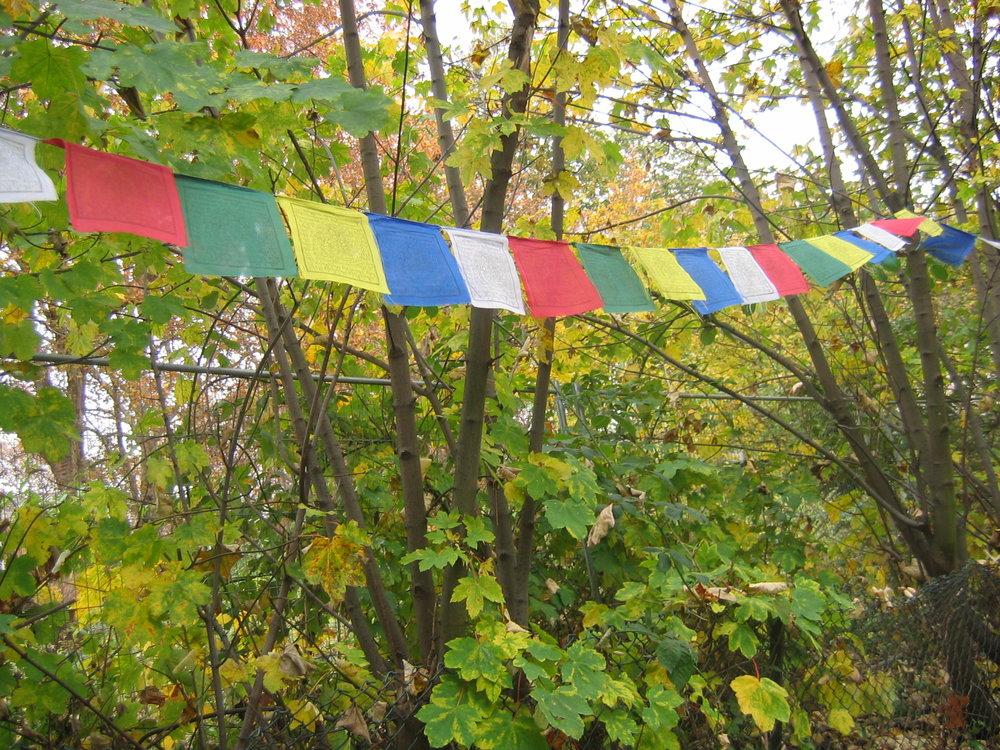 Tibetan_prayer_flags,_samye_dzong_London.jpg