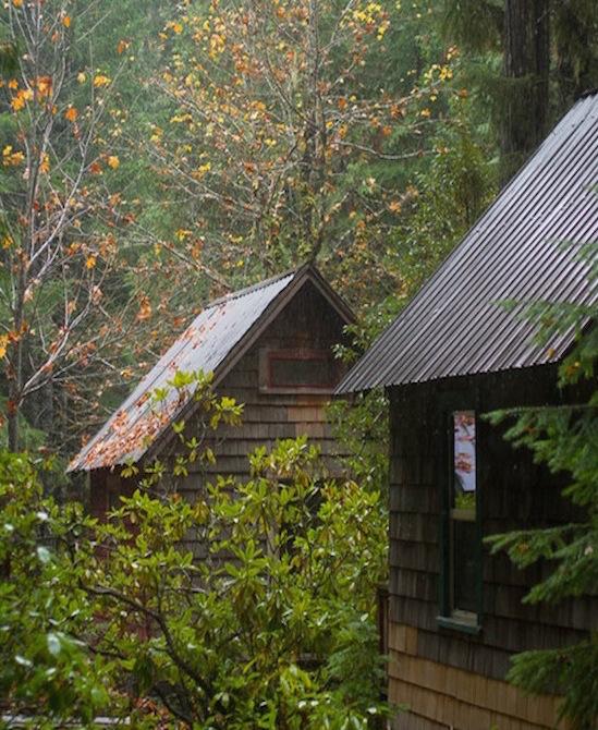 -fall cabins-bbush-vert.jpg