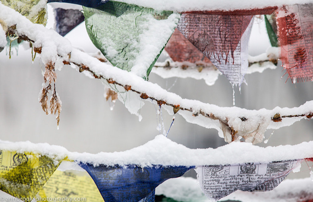 prayerflags in snow-ann.brooks copy 3.jpg