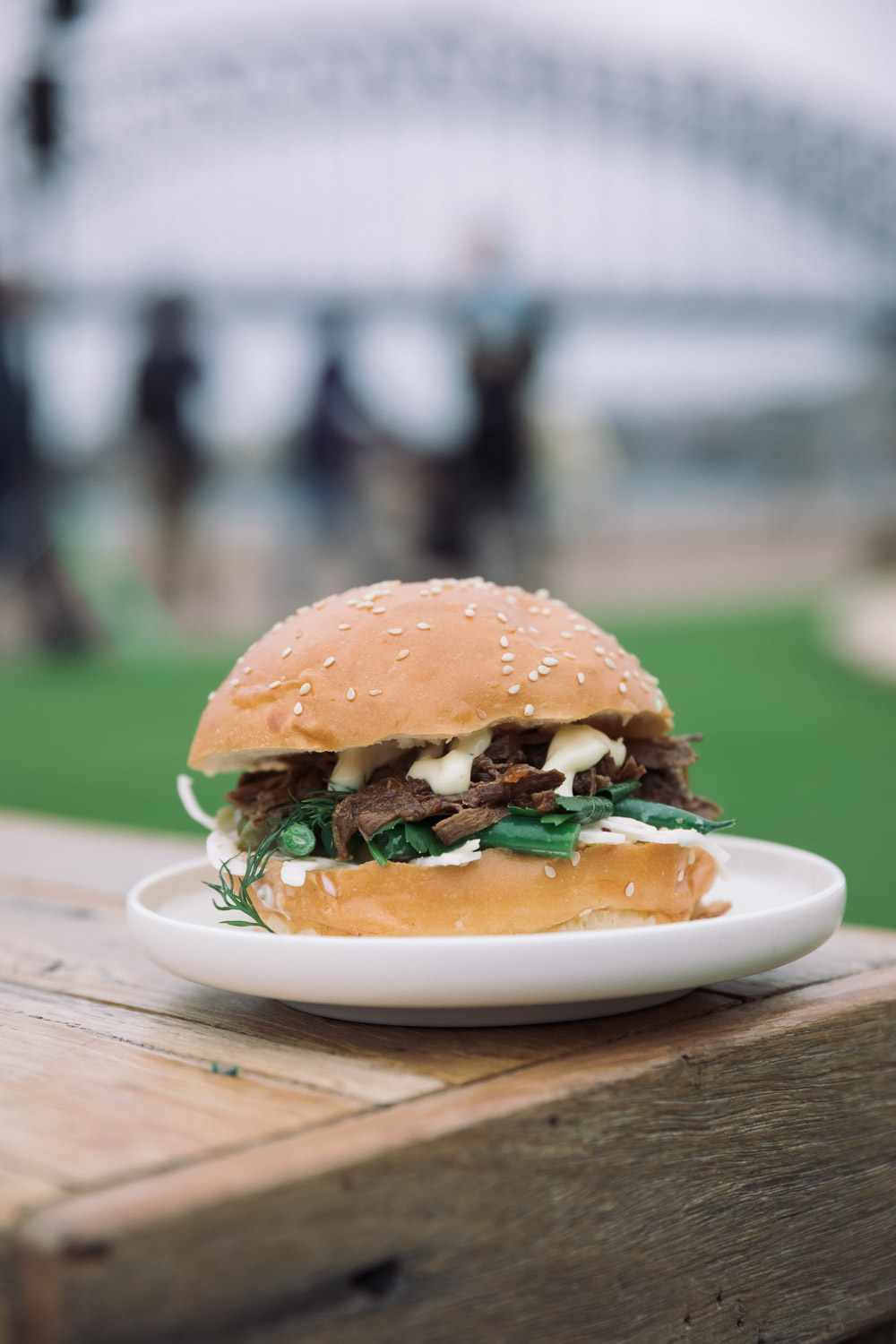Homeground Festival 2016 - Kangaroo Slider