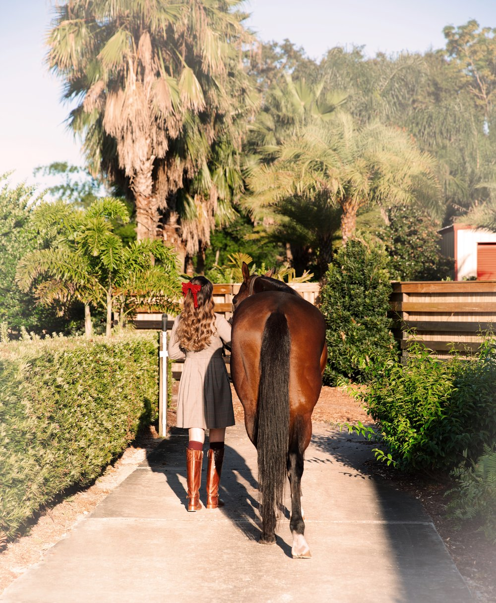 Sea Crest Equestrian stables.JPG
