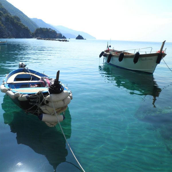 Boats in the Cinque Terre