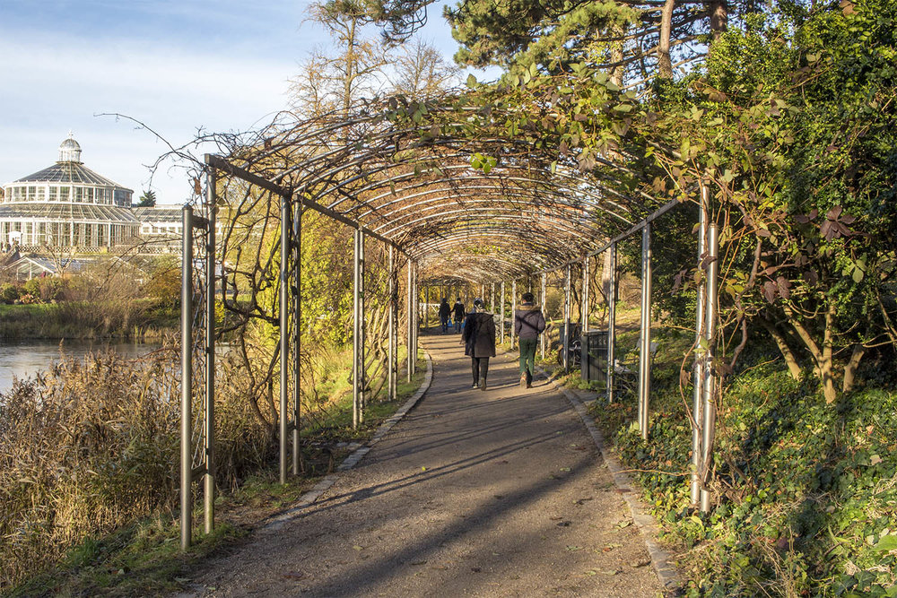 botanical-gardens-copenhagen-pathway.jpg
