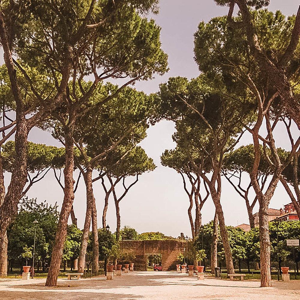 Rome-garden-of-oranges.jpg