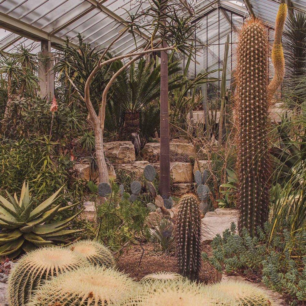 kew-gardens-princess-diana-conservatory.jpg