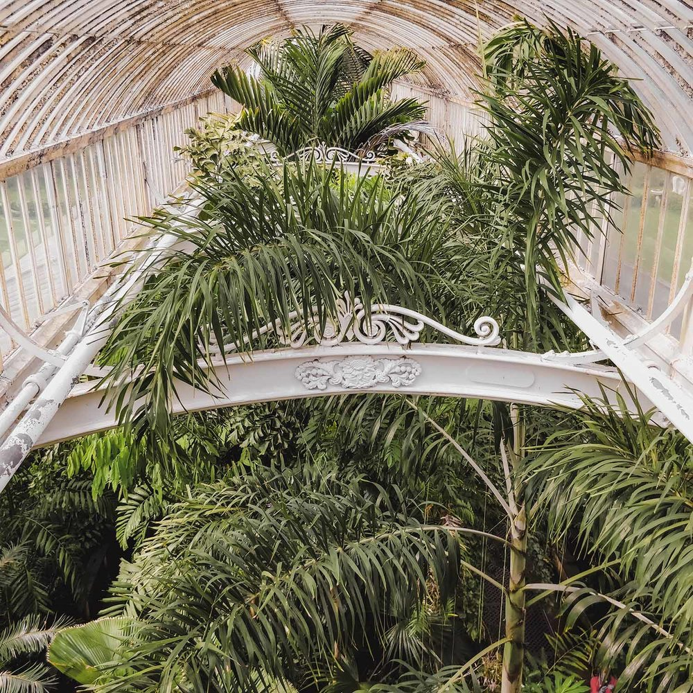 kew-gardens-palm-house.jpg