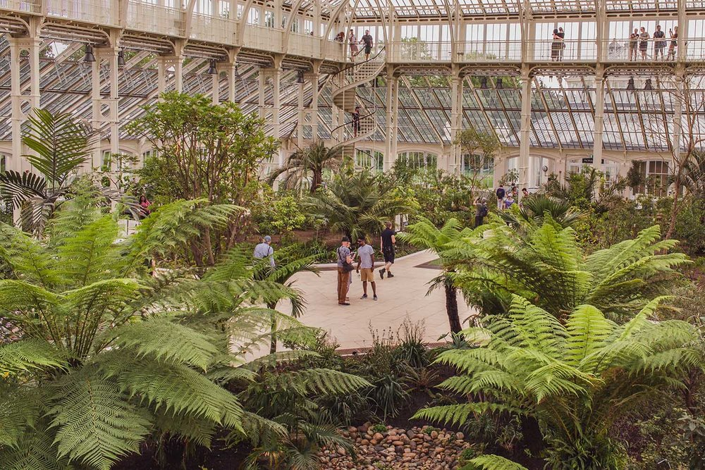kew-gardens-temperate-house.jpg
