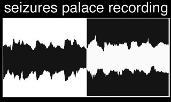 Seizures Palace Recording