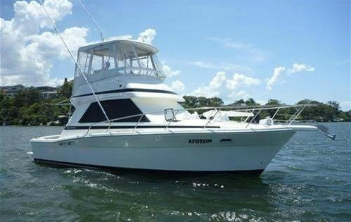 Photo of Flybridge Boat