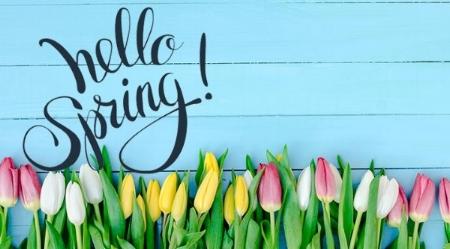Springtime%20Celebration.jpg