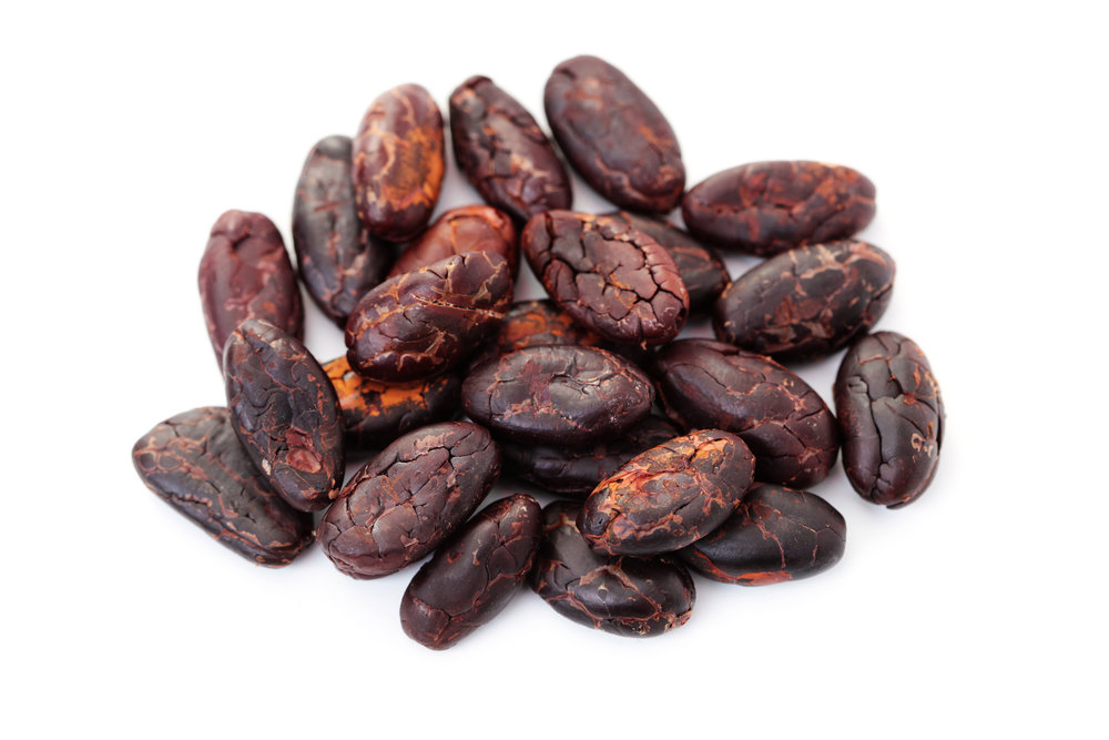 Isolated Cocoa Beans.jpeg