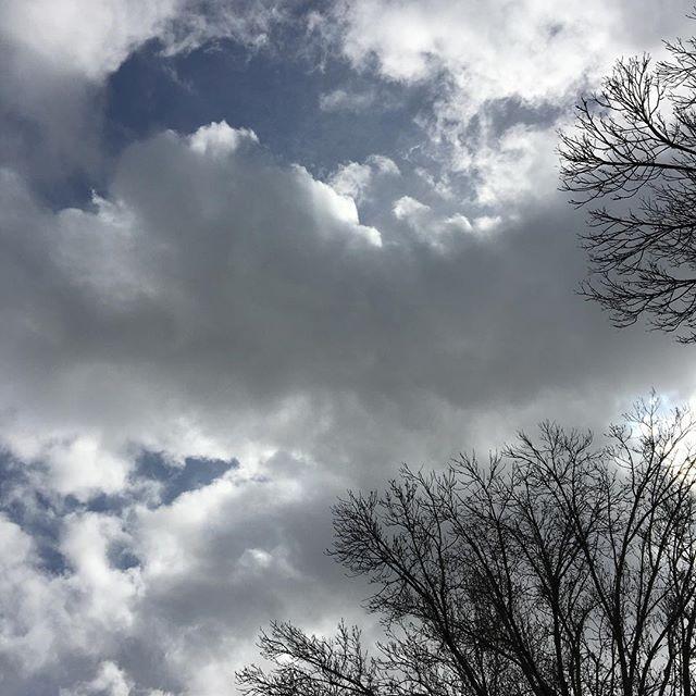 Cloudy color palettes 4ever! ☁️