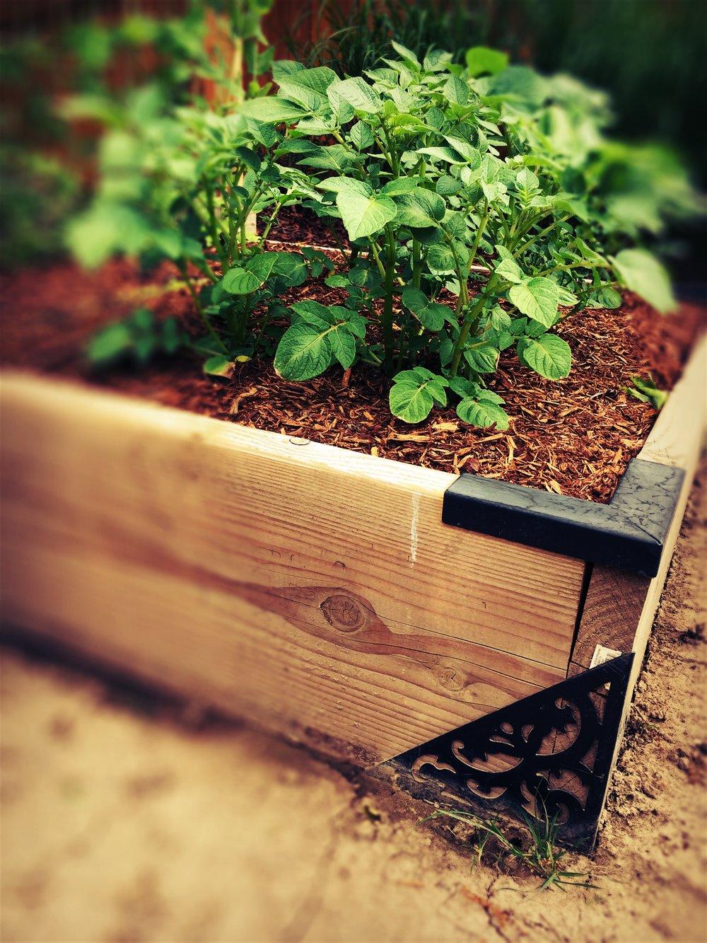 GardenFrame