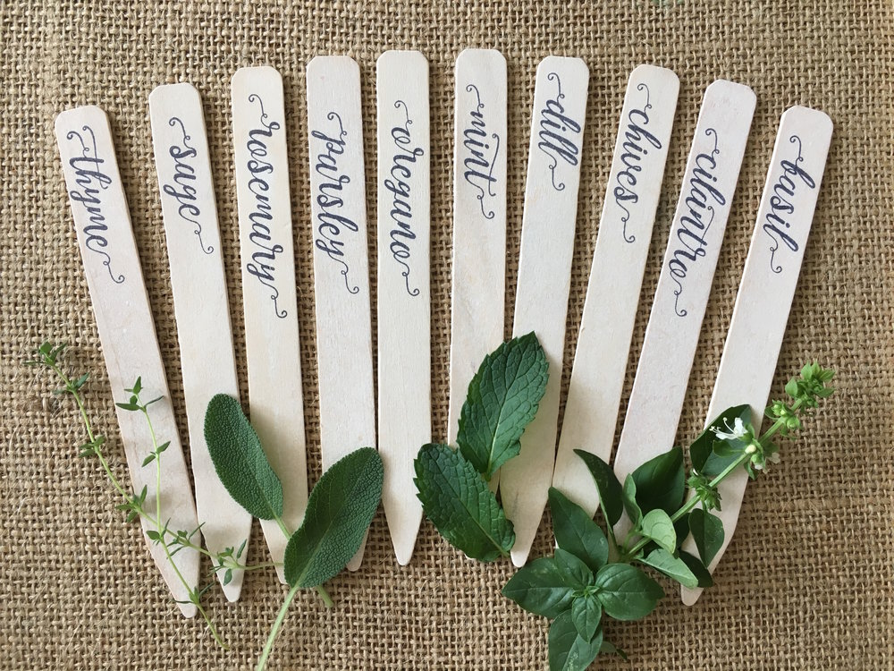 Plantid™ GARDEN LABELS - HERB VARIETY PACK