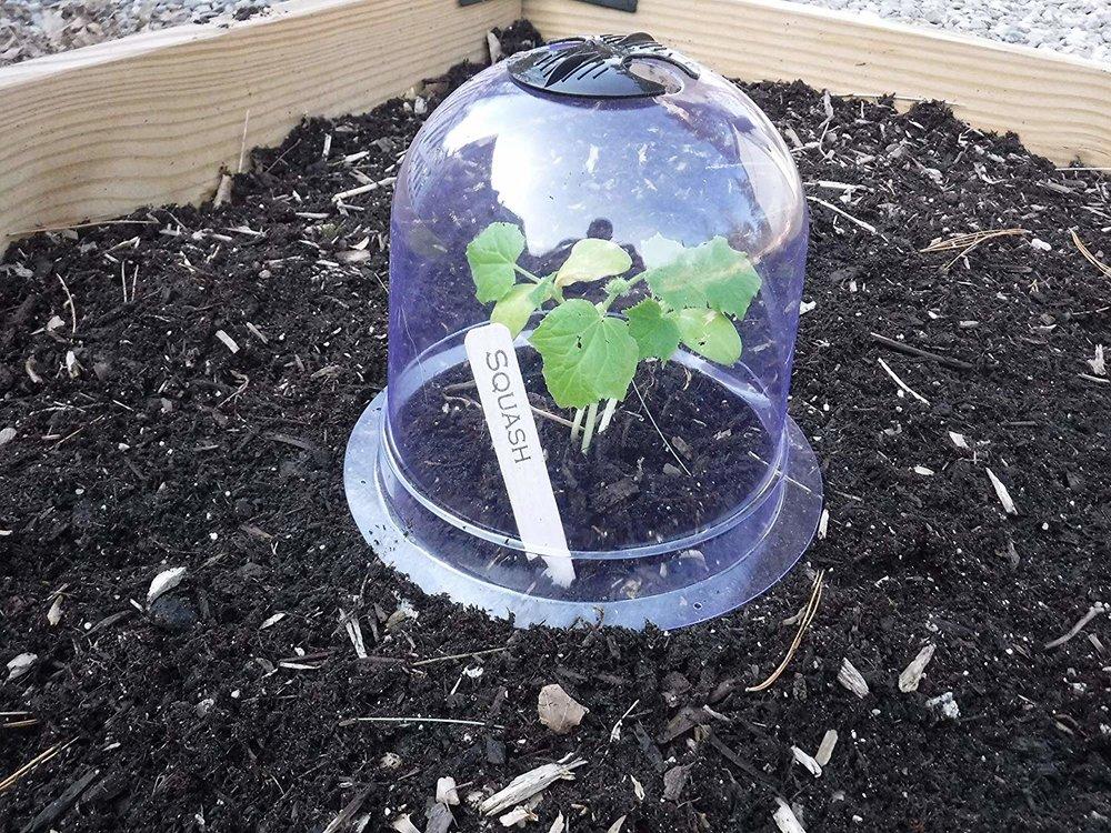 GrowAway Small Domes