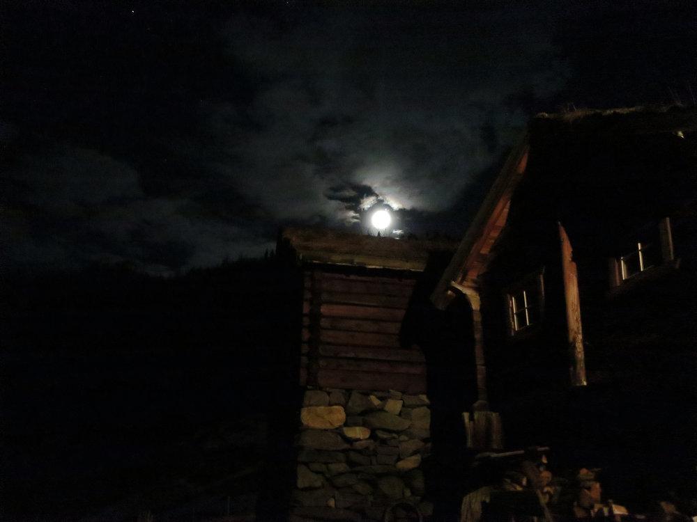 avdalen i månelys red.jpg