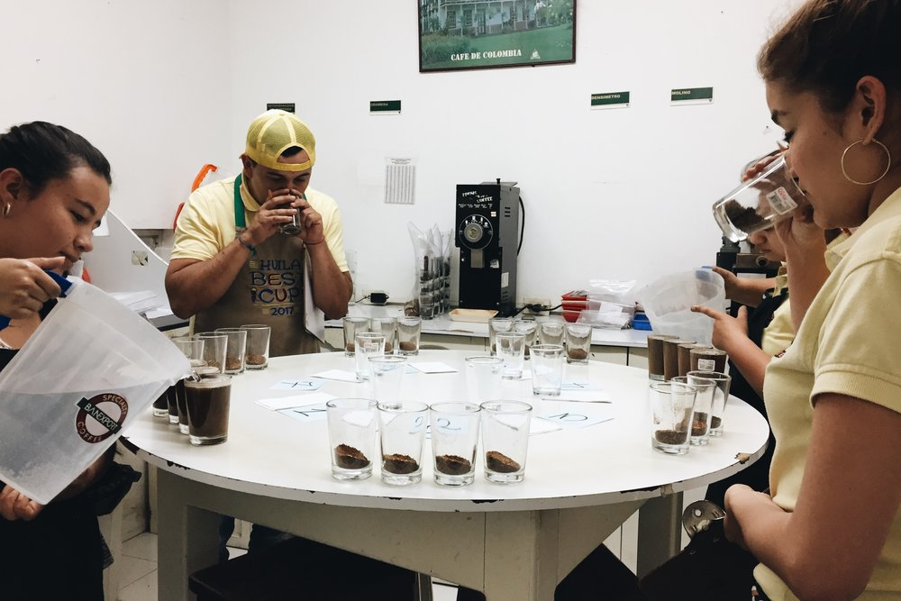 Cupping at the Banexport lab in Huila.