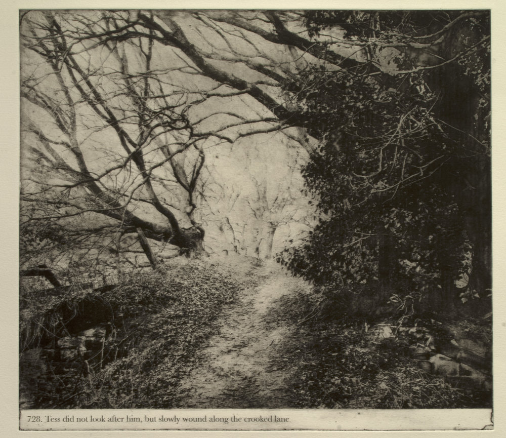 Photopolymer Gravure 2016, from the series Thus Tess walk on, an ongoing project adapting Thomas Hardy's 19th century novel Tess of the D''Urbervilles