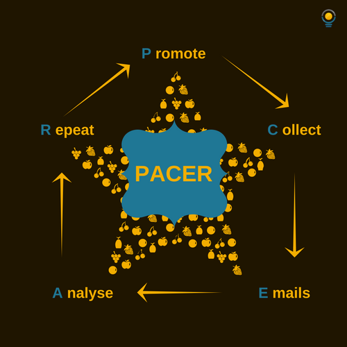PACER (Promote > Collect > Email > Analyse > Repeat)