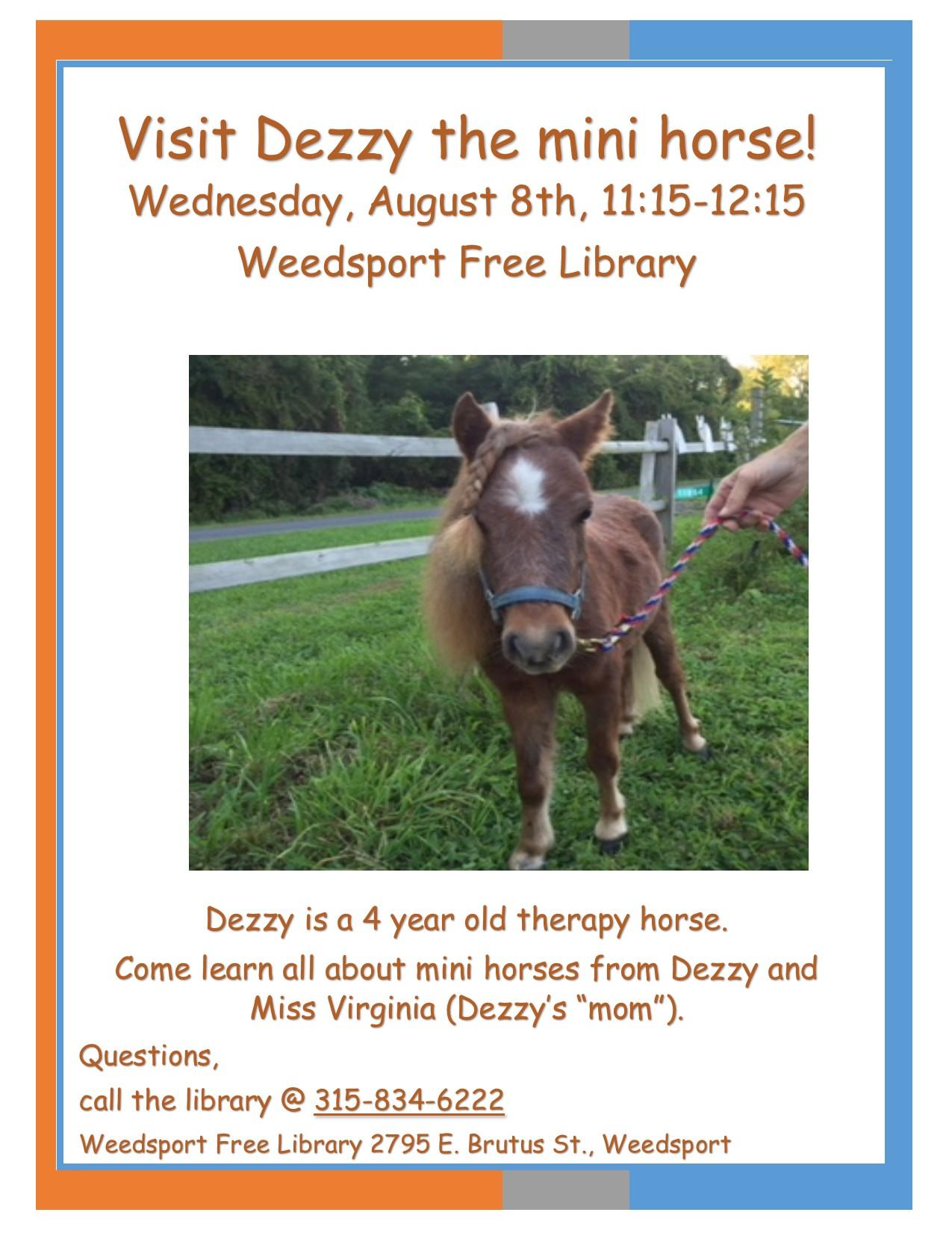 Dezzy The Mini Horse Weedsportlibraryorg