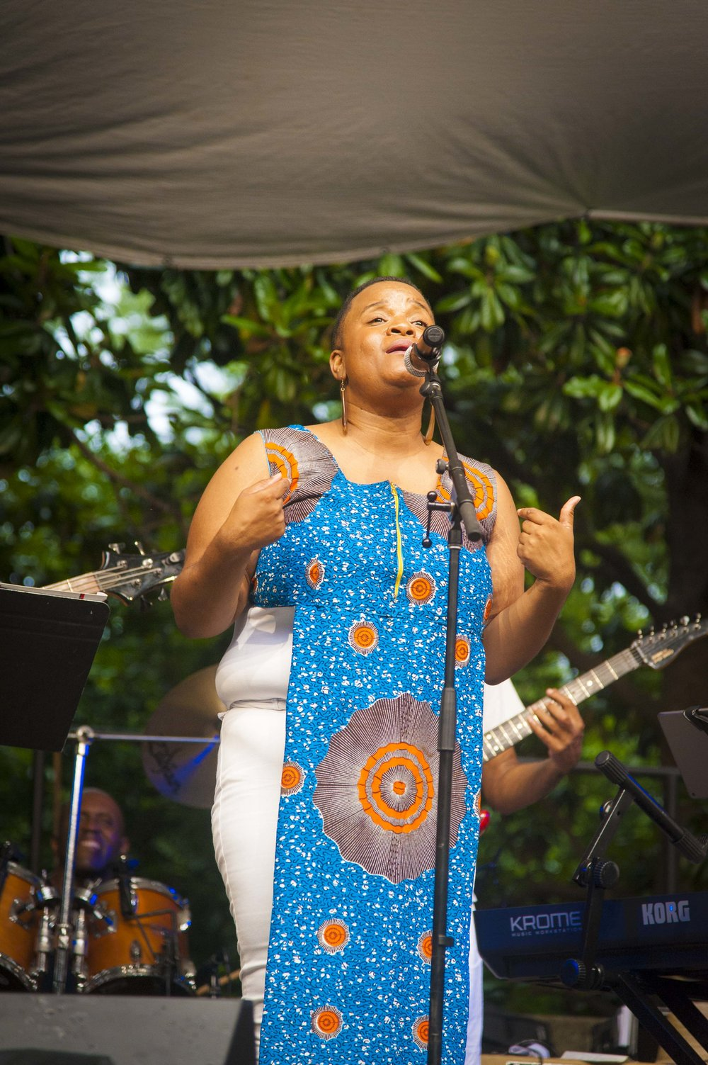 Jazz Matters at Wrens Nest with TC Carson105.jpg