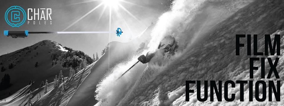 Char Ski Poles