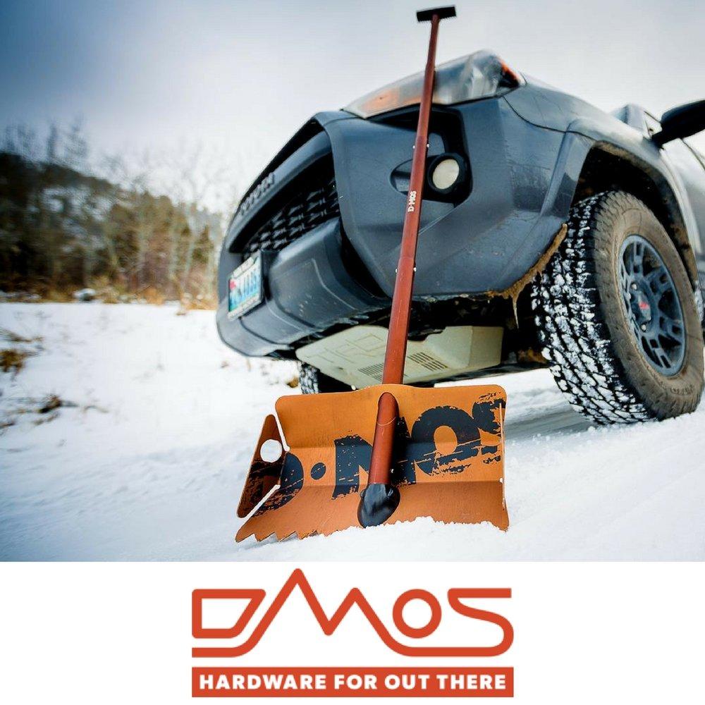 DMos Brand image (1).jpg