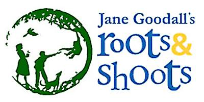 Image result for Roots and Shoots