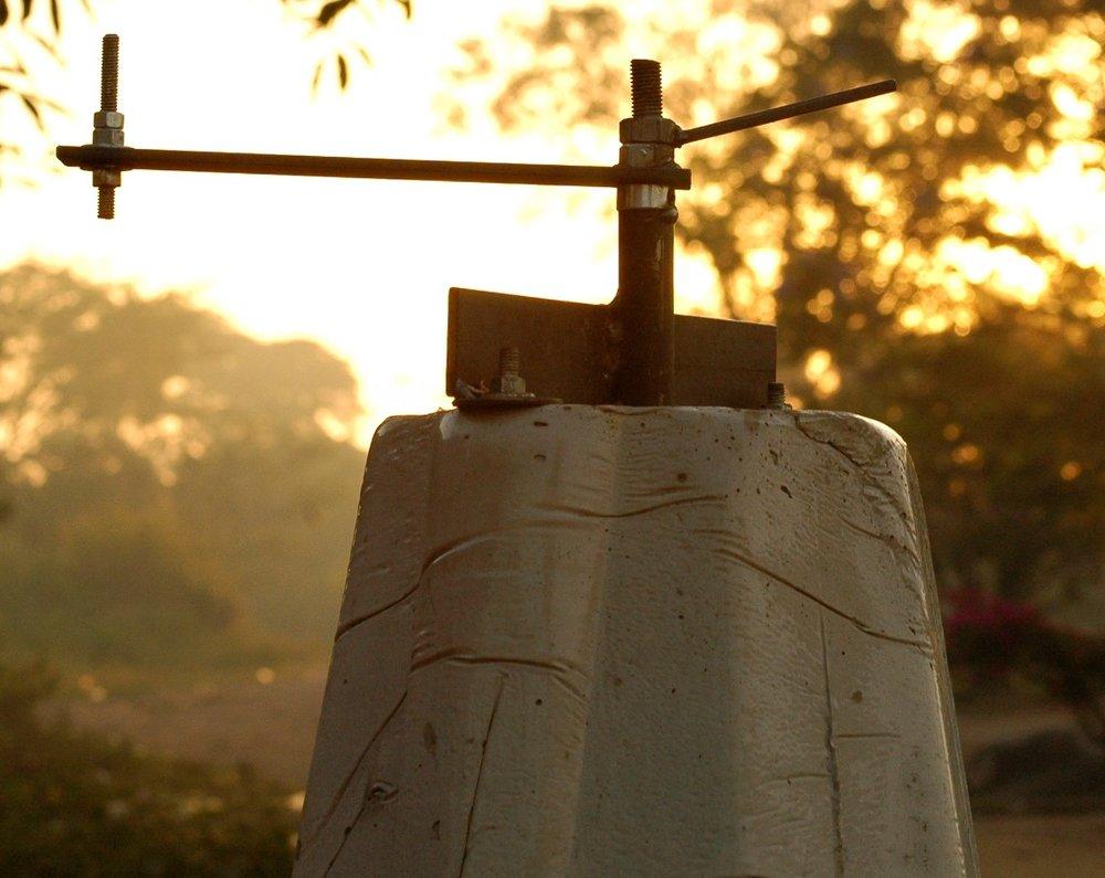 Close-up of sheller in Sunrise.JPG